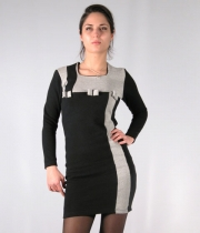 Women Dress Zara